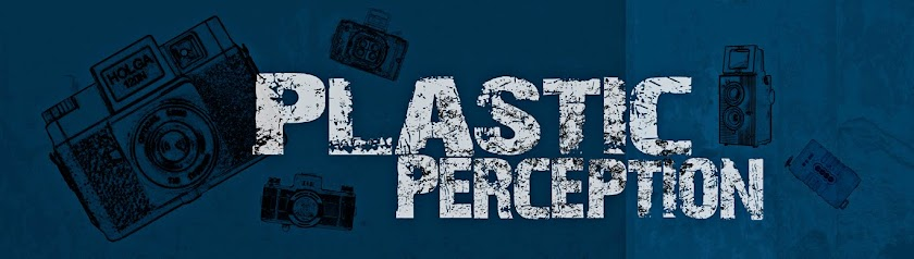 Plastic Perception