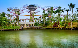 Beautiful Artificial garden Singapore