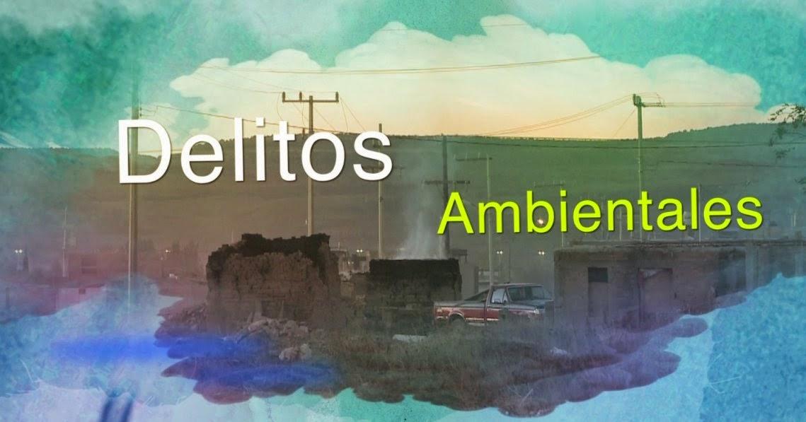 Delitos ambientales y Derecho penal