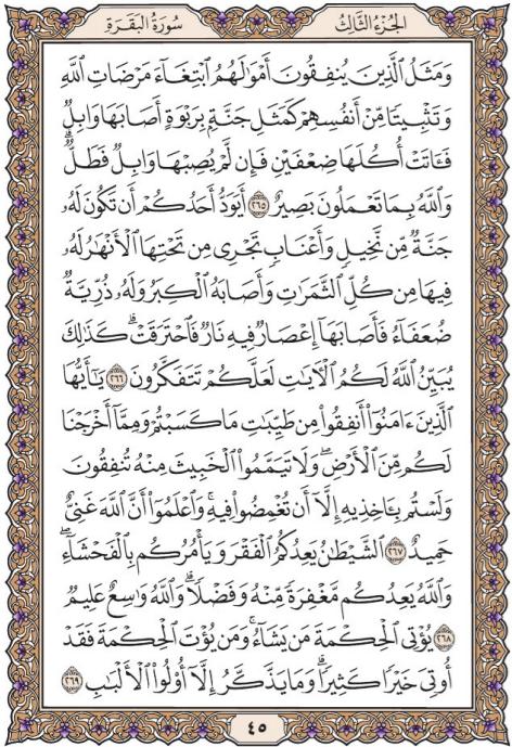 التفسير الميسر للصفحة 45 من سورة البقرة من اﻵية ( 265 ) إلى اﻵية ( 269 )