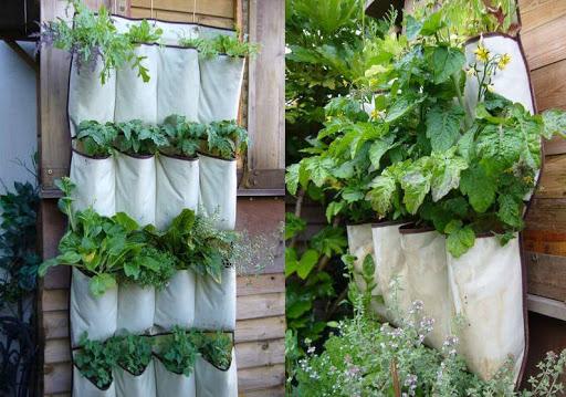 Easy Simple Garden House Design