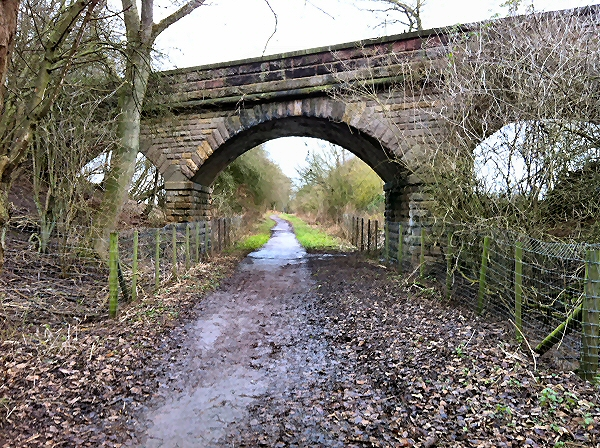 Looking towards Wetherby through bridge 15