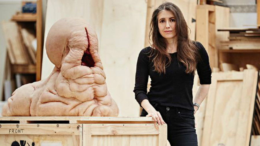 Tony Podesta Art >> The Pizzagate Blog I Am Patricia Piccinini Tony Podesta S