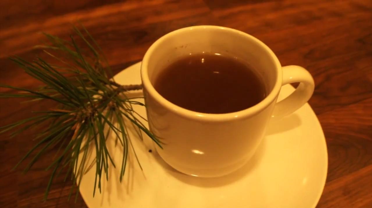 Pine needles tea