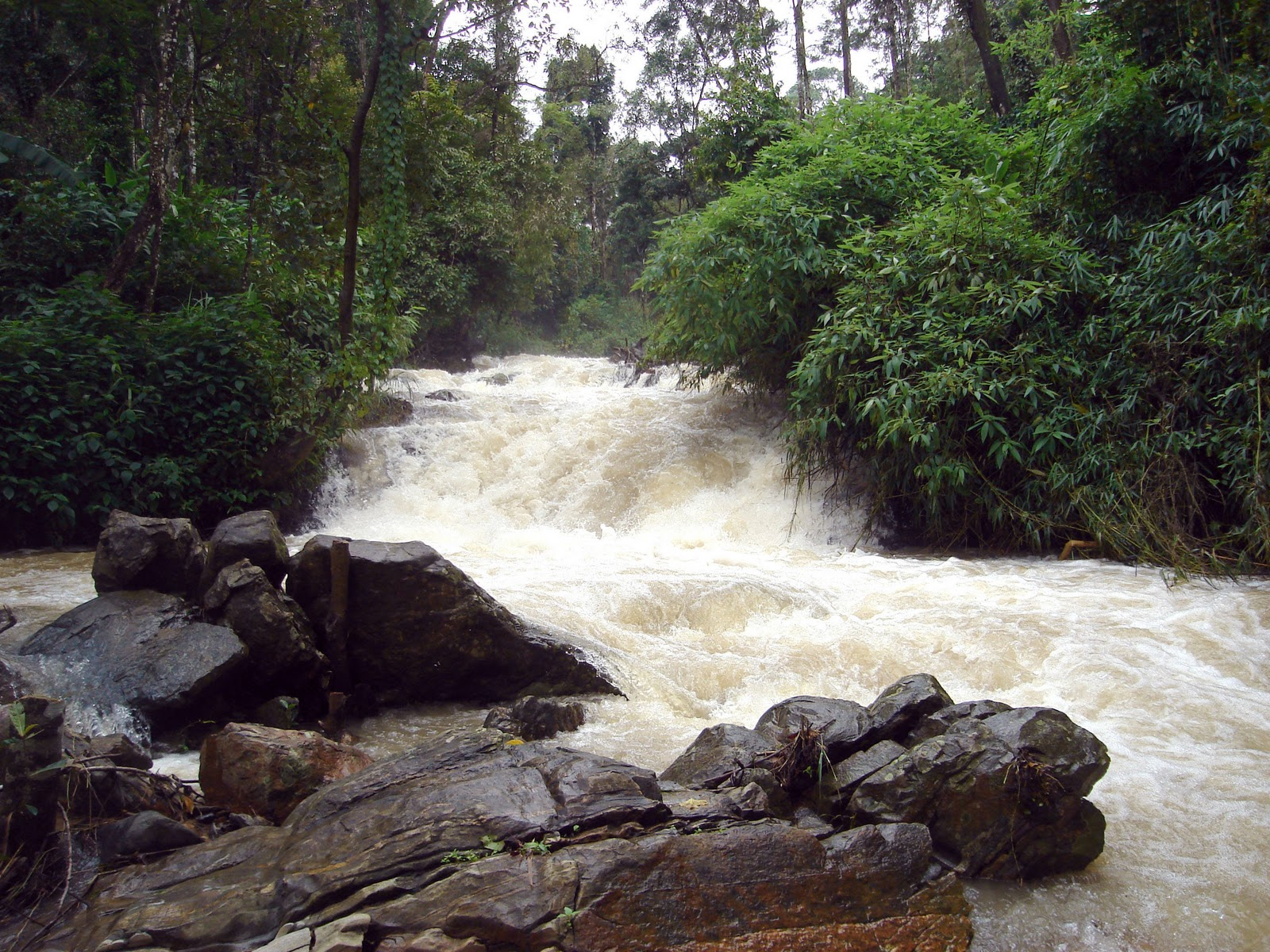 coorg tourism Touristplacesinindia offers you complete city information on coorg, the places to see in coorg, the places to visit around coorg, the tourist attractions of coorg, popular weekend trips from coorg, excursions from coorg, events and festivals celebrated in coorg.
