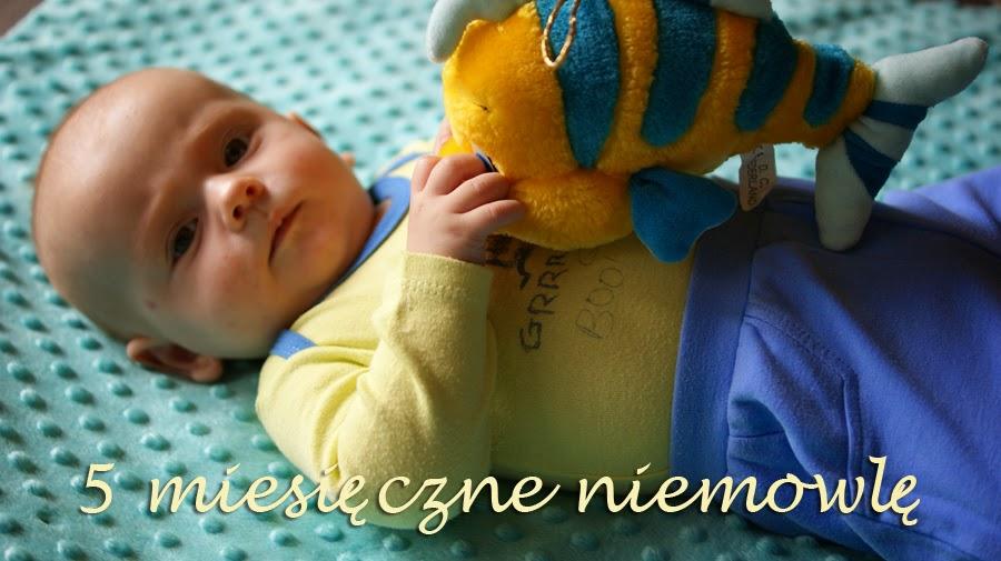 5 miesięczne niemowlę