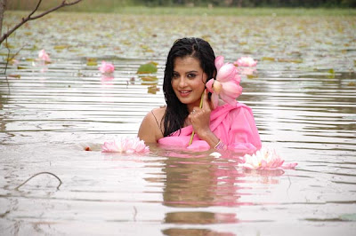 roopika spicy @ senkadu movie actress pics
