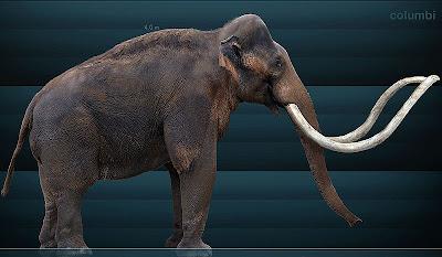 elfantes extintos Mammuthus