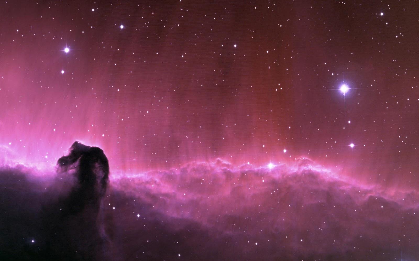 Good   Wallpaper Horse Nebula - Horsehead-Nebula-Wallpaper-HD-20  You Should Have_152118.jpg