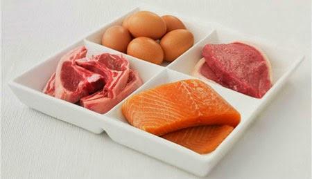 Jumlah Kandungan Protein Pada Daging Dan Telur