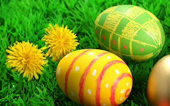 #7 Easter Egg Wallpaper