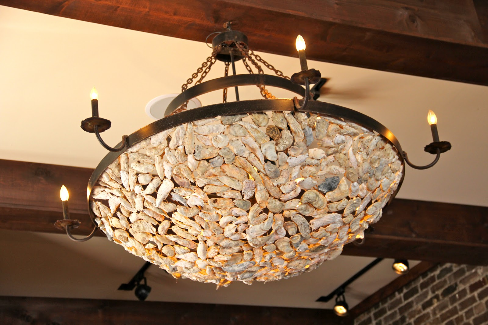 Need Some Oyster Shells