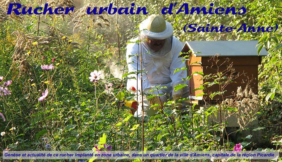 Rucher urbain d'Amiens (Sainte-Anne)