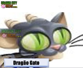 Dragão Gato
