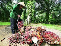 Lowongan Kerja PT Perkebunan Mitra Ogan