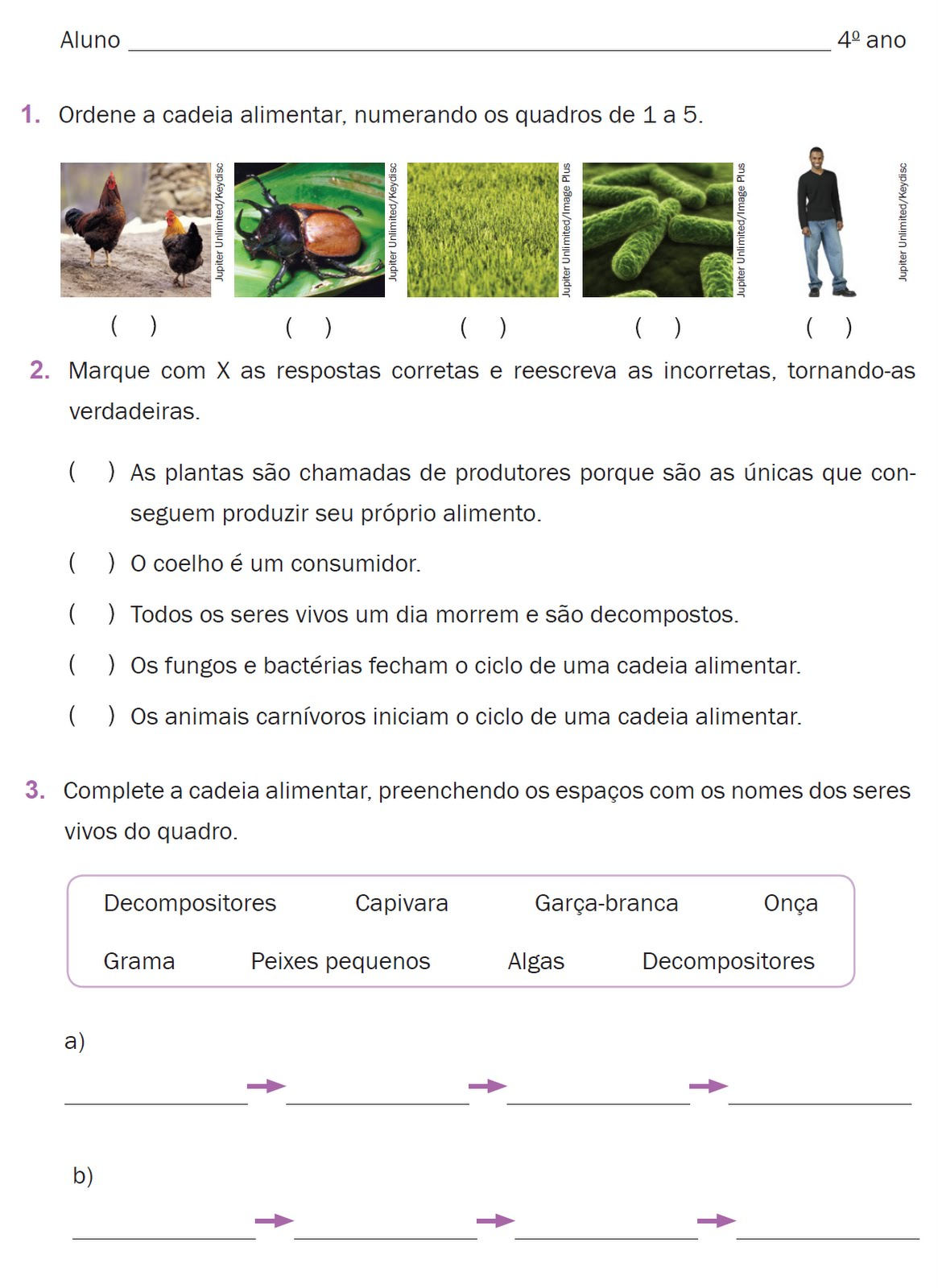 Avalia    O Ci  Ncias   1   Bimestre   4   Ano   Editora Atual