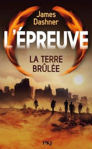 http://lovereadandbooks62.blogspot.fr/2015/01/chronique-52-lepreuve-t2-la-terre.html