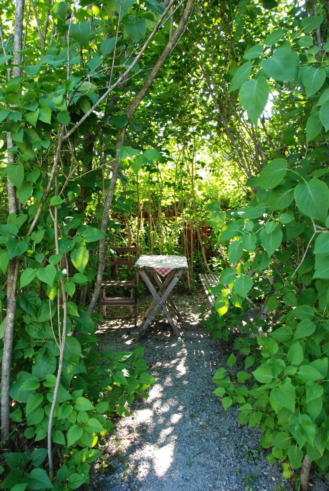Den Passionerade Trädgårdsturisten: Bilder från resan 11-13 juli ...
