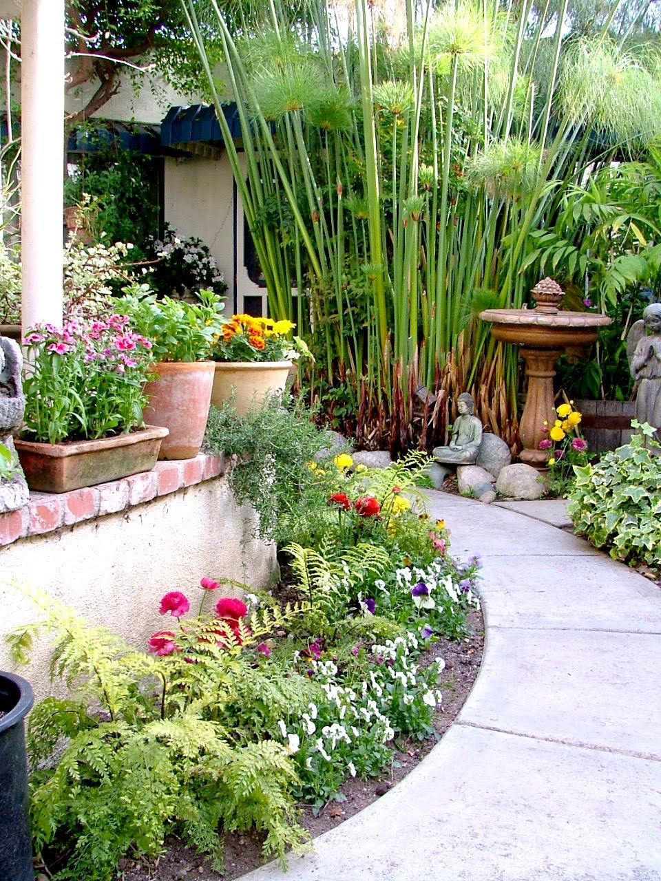 Southern gardening and food garden bed ideas for Garden bed ideas