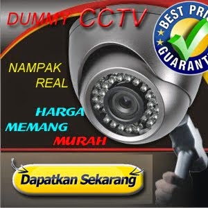 Dummy Fake Replica CCTV