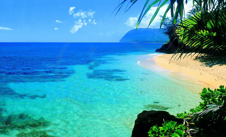 Pasterka: Hawaje i Hawaii Tropic krem z filtrem dla Mini ...