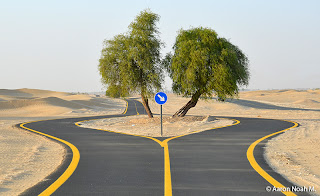 Dubai City Bike Friendly, Dubai,bike lane,cycling lane,
