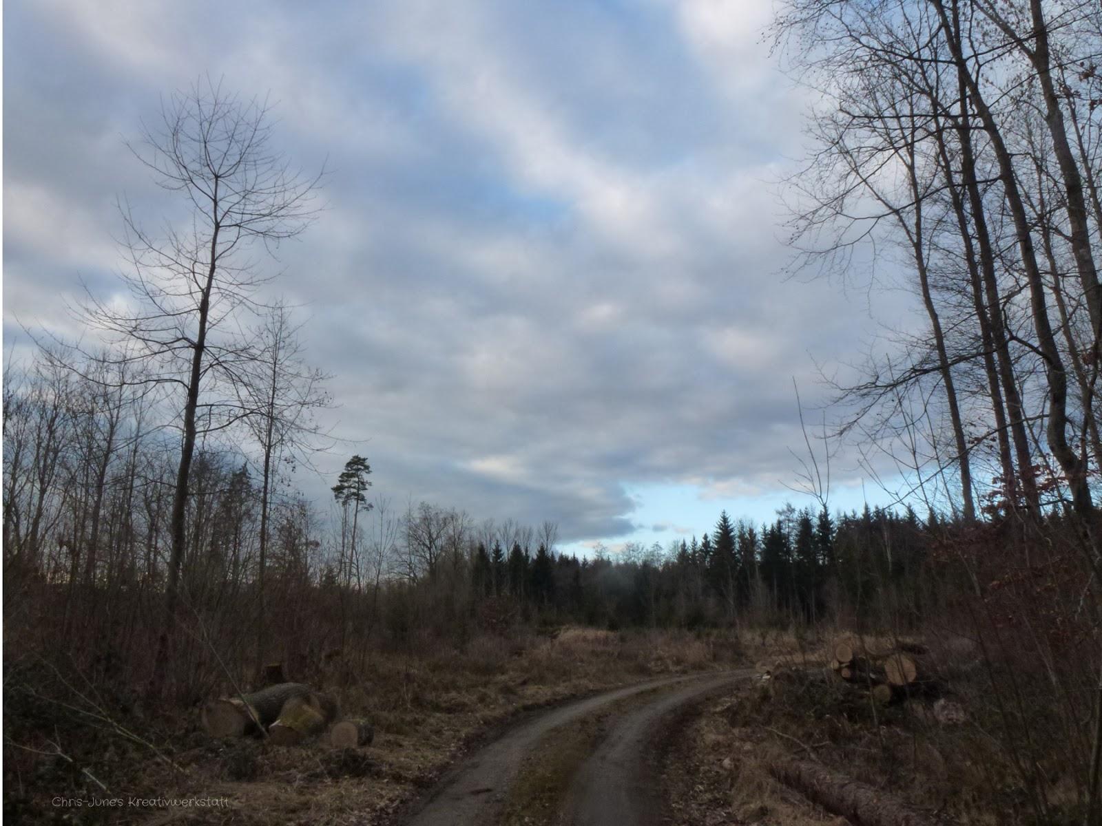 Waldweg Februar