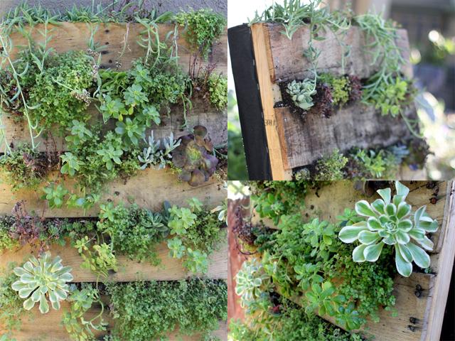 ideias jardim reciclado:Jardim vertical de palete de madeira reciclado [fotos] – Ideias Green