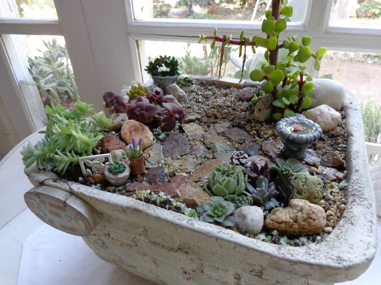 Teacup And Roses: Mi pequeño jardín