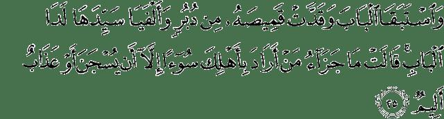 Surah Yusuf Ayat 25