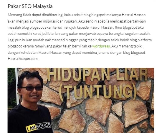 Jadi blogger berjaya dalam niche SEO blogspot