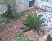 Jardim Antes