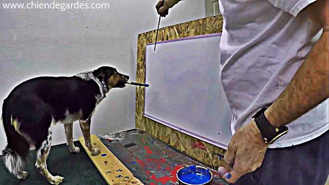 Jumpy, Le chien Picasso qui peut dessiner sur un tableau