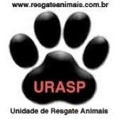 Serviço especializado em remoção de animais.