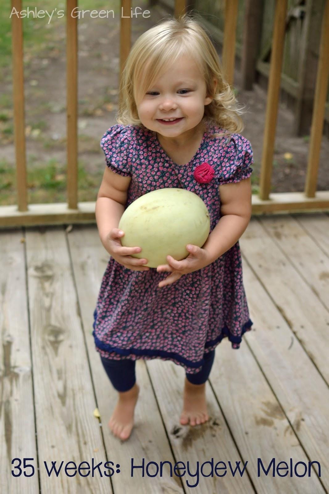 Ashley's Green Life: 35 weeks