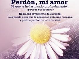 9 Tiernas Frases De Amor Para Pedir Perdon A Tu Pareja