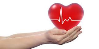 Makanan-Makanan Yang dapat menyehatkan Jantung dan kulit