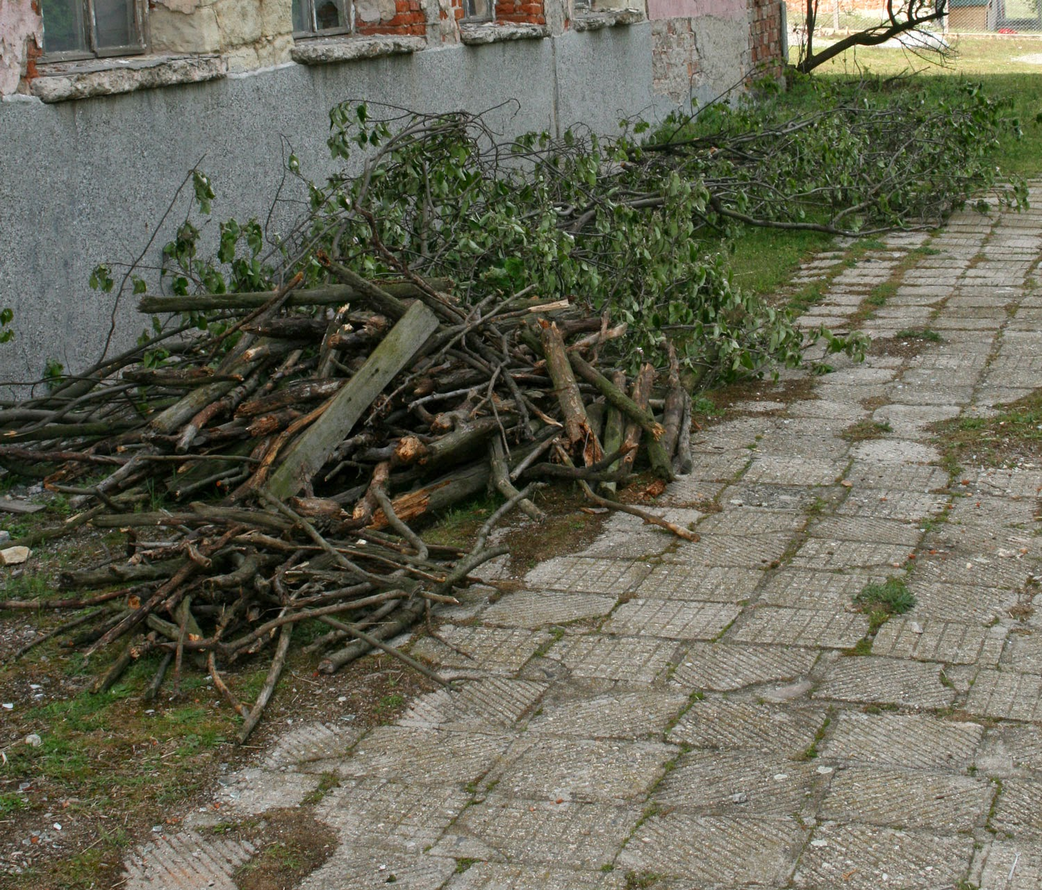 Wood moved safe from looters