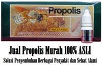 Jual Propolis Murah 100% ASLI Melia