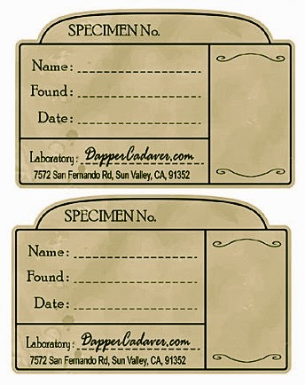 photograph relating to Free Printable Vintage Apothecary Labels named The Boho Fowl: Printable Common Apothecary Labels