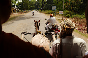 Последние денечки в Индии. Курс на Непал!
