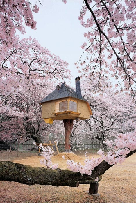 Admirable Places From Japan