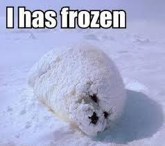 freezing+1.jpg