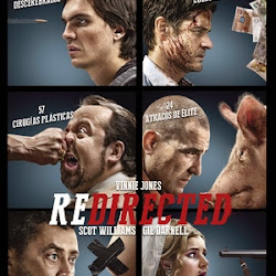 Poster Redirected 2014
