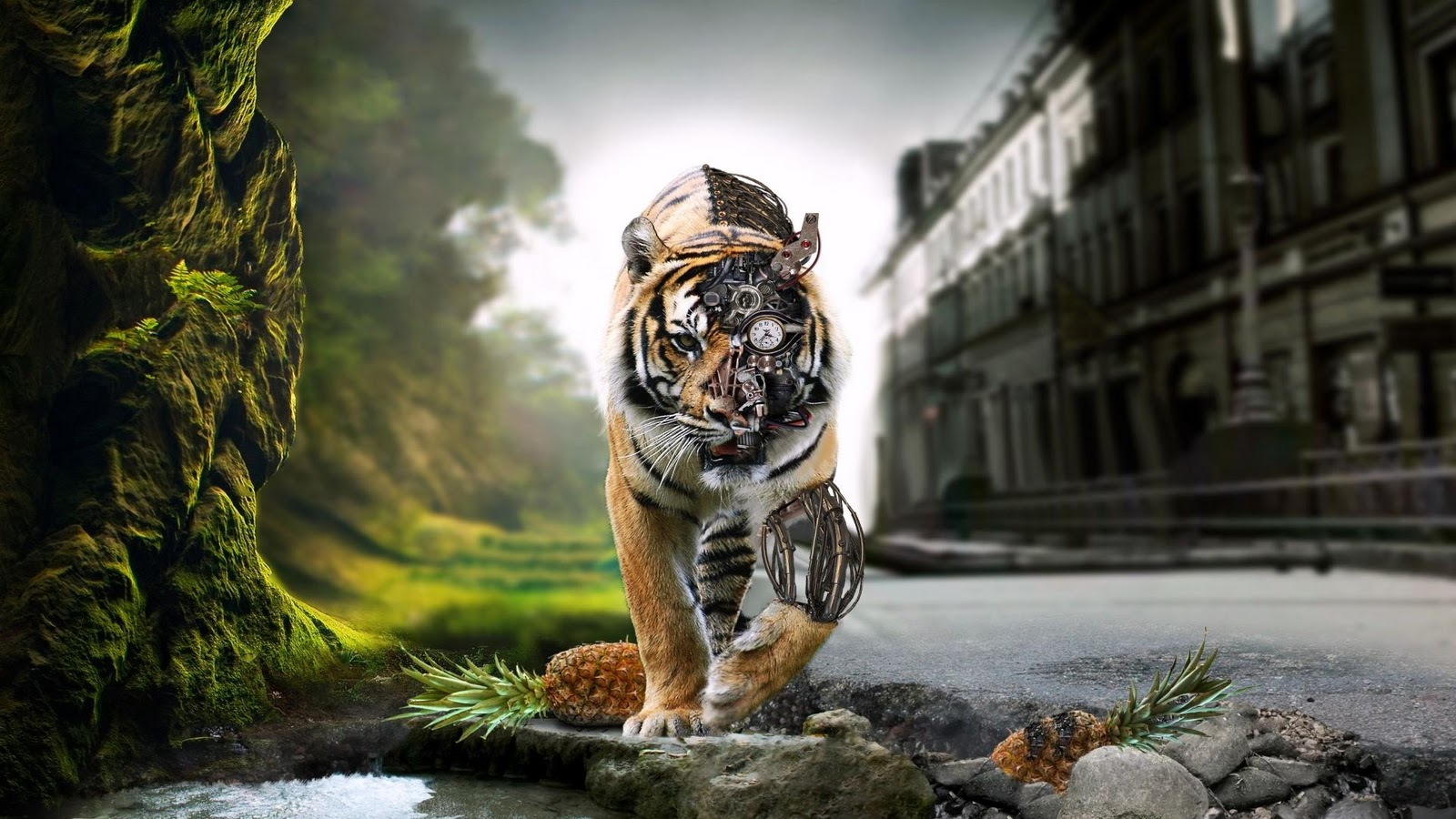 http://4.bp.blogspot.com/-zM-L_Irm2Nw/Tx6Z_rNksmI/AAAAAAAAAnI/dmzkJPWCrwY/s1600/Digital-Art-Tiger-Wallpaper-1080p-High-Definition.jpg