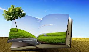 La educación ambiental.