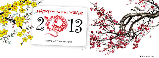 Ảnh bìa timeline facebook new year đẹp