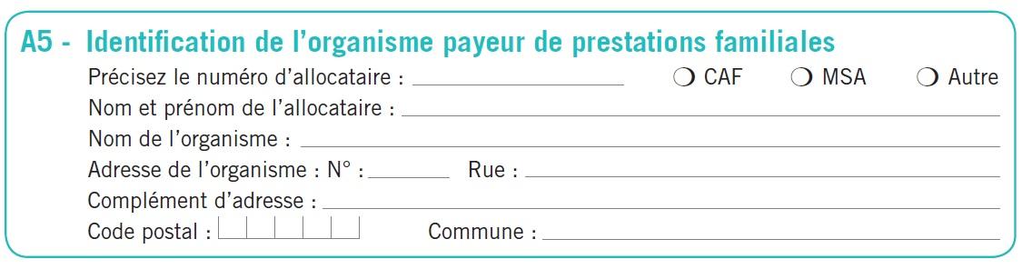 Le paiement des prestations incombe aux caisses d'allocations ...