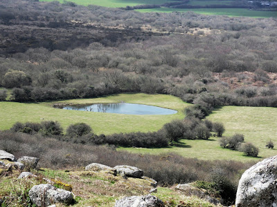 View from Helman Tor Cornwall