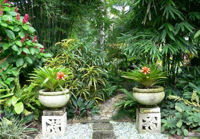 tropical-garden-path